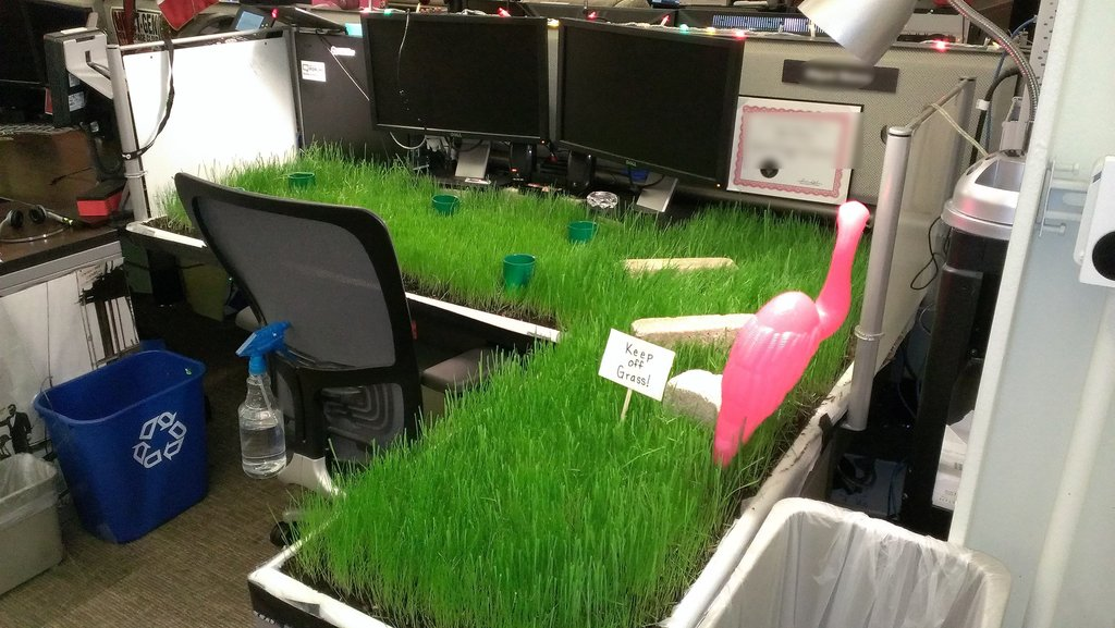 funny cubicle prank what s happening